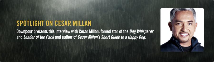 Cesar Millan Interview - Listen Now
